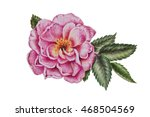 Dog Rose Watercolor Painting...