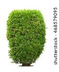bush or shrubs on white... | Shutterstock . vector #468579095