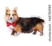 dog pembroke welsh corgi | Shutterstock . vector #468783989