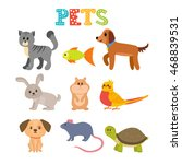 Stock vector set of pets cute home animals in cartoon style vector illustration 468839531