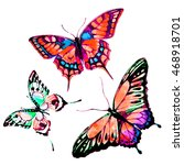 butterfly watercolor  isolated