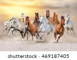 Stock photo horses run gallop in dust against sunset sky 469187405