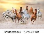 Horses Run Gallop In Dust...