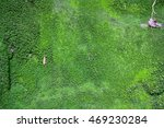 wall of moss in the mountains   Shutterstock . vector #469230284