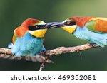 firm handshake birds | Shutterstock . vector #469352081