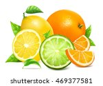 fresh citrus fruits with leaves.... | Shutterstock .eps vector #469377581
