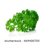 parsley isolated on a white... | Shutterstock . vector #469400705