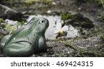 Ceramic Frog In The Garden