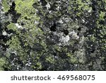 Green Lichen On A Rock. Natura...