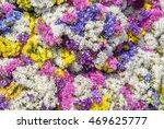 Colorful Flower Carpet  ...