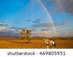 antelope oryx standing under... | Shutterstock . vector #469805951