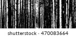 the trunks of the trees. forest ... | Shutterstock .eps vector #470083664
