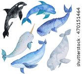 Whales Sea Animals Dolphin...