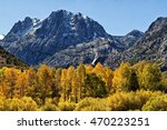 Carson Peak Sierras Fall Color...