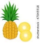 pineapple and slice vector... | Shutterstock .eps vector #47045518
