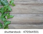 green leaf of mulberry placed... | Shutterstock . vector #470564501