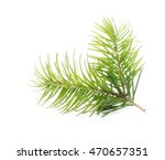 fir tree branch isolated on... | Shutterstock . vector #470657351