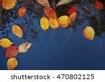 autumn leaves | Shutterstock . vector #470802125