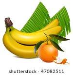 photo realistic vector. fresh...   Shutterstock .eps vector #47082511