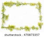 lemon green golden pine's... | Shutterstock . vector #470873357
