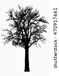 tree   bare branches   black... | Shutterstock . vector #470917661