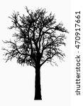 tree   bare branches   black... | Shutterstock . vector #470917661