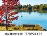 Autumn Landscape Of Gungahlin...
