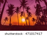 silhouette coconut palm trees... | Shutterstock . vector #471017417