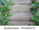 green leaf of mulberry placed... | Shutterstock . vector #471035471