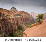 lone tree at zion canyon... | Shutterstock . vector #471051281