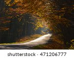colorful autumn forest | Shutterstock . vector #471206777