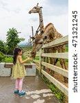 Giraffe Eating Banana From...