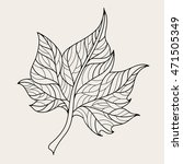 hand drawn maple leaf for adult ...   Shutterstock .eps vector #471505349