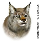 portrait of realistic lynx on... | Shutterstock . vector #471526865