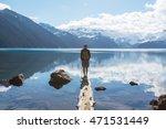 hike on garibaldi lake near... | Shutterstock . vector #471531449