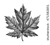 engraving maple leaf hand drawn ... | Shutterstock .eps vector #471582851