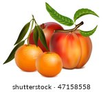 vector illustration of fruits. | Shutterstock .eps vector #47158558
