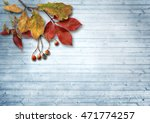 autumn leaves and ashberry over ... | Shutterstock . vector #471774257