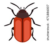 beetle bug insect isolated on... | Shutterstock .eps vector #471886007
