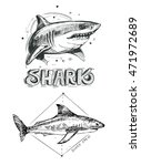 shark sketch. vector... | Shutterstock .eps vector #471972689