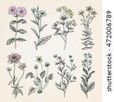 vintage botany illustration | Shutterstock .eps vector #472006789