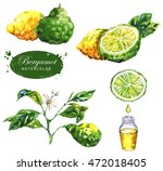 hand drawn watercolor... | Shutterstock . vector #472018405