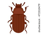 beetle bug insect isolated on... | Shutterstock .eps vector #472310479