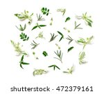 branches  leaves and petals... | Shutterstock . vector #472379161