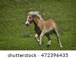 beautiful horses on the green... | Shutterstock . vector #472396435
