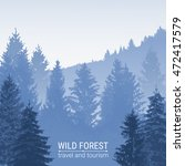 Wild Forest. Pine And Spruce O...