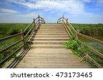 wetland landscape | Shutterstock . vector #473173465