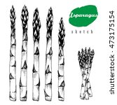 5 stalks of asparagus and... | Shutterstock .eps vector #473175154