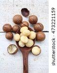 macadamia nuts   Shutterstock . vector #473221159