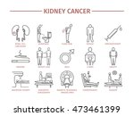 kidney cancer symptoms. causes. ... | Shutterstock .eps vector #473461399